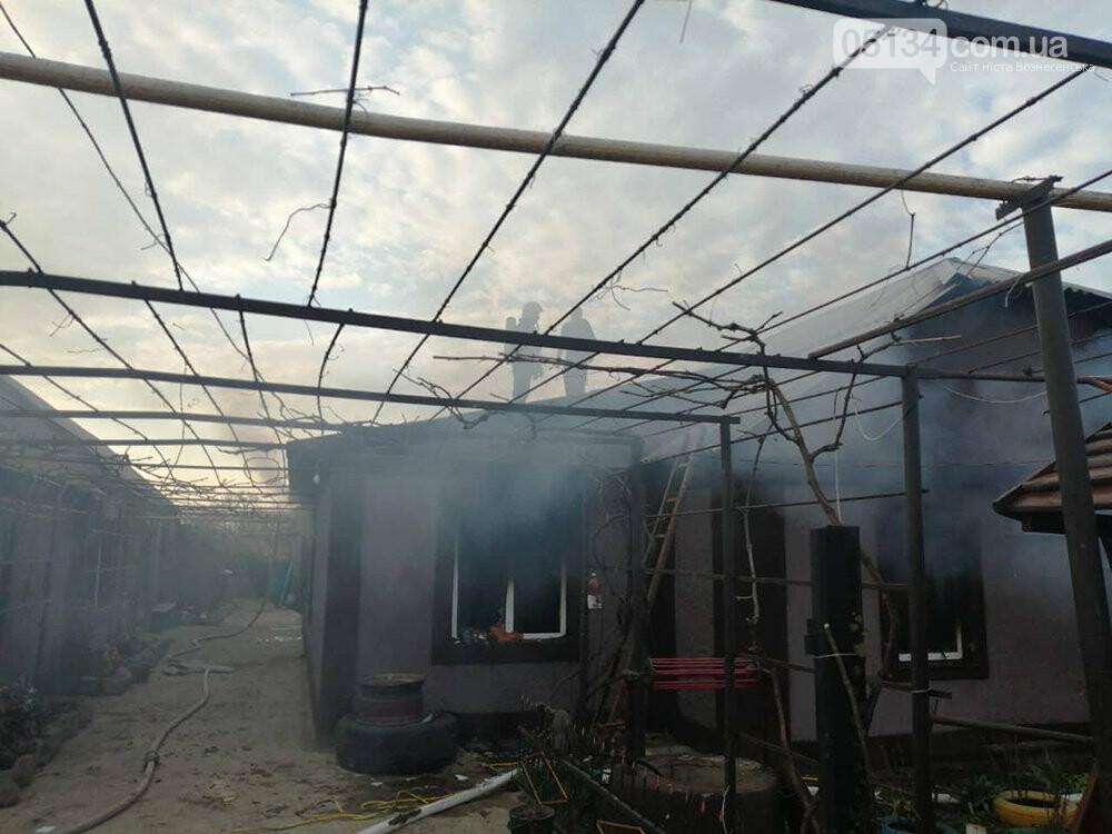В селі на Миколаївщині через пожежу в будинку загинув 4-річний хлопчик, фото-1