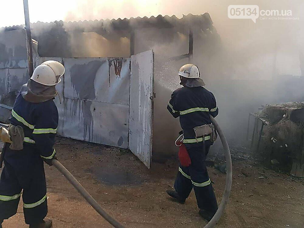 За одну добу рятувальники ліквідували 10 пожеж на Миколаївщині, - ФОТО, фото-2