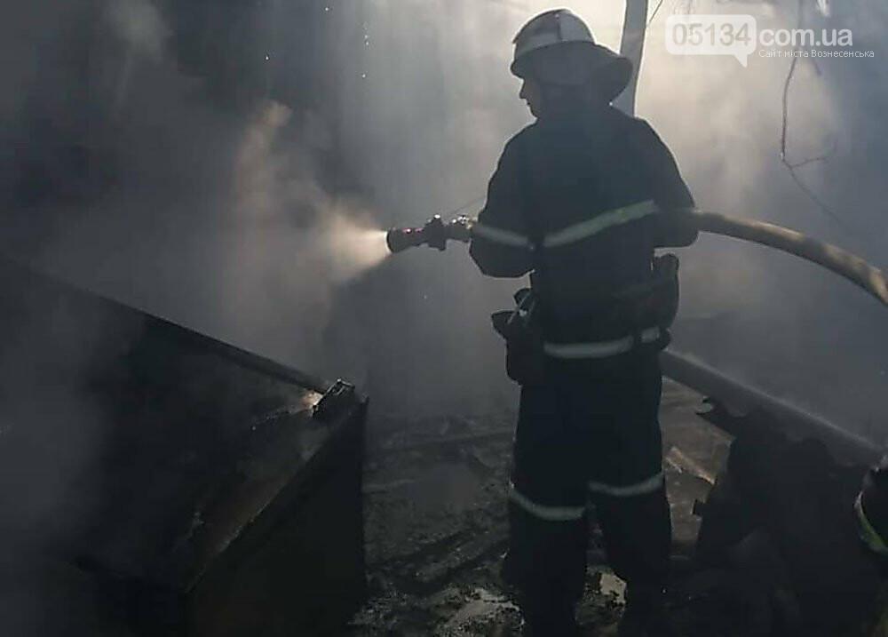 За одну добу рятувальники ліквідували 10 пожеж на Миколаївщині, - ФОТО, фото-3