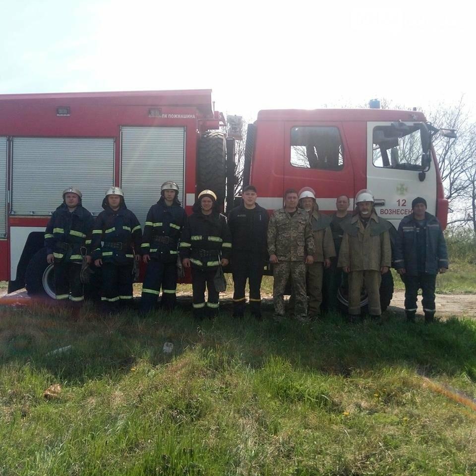 У Вознесенську гасили пожежу у лісі - впорались на відмінно, фото-1