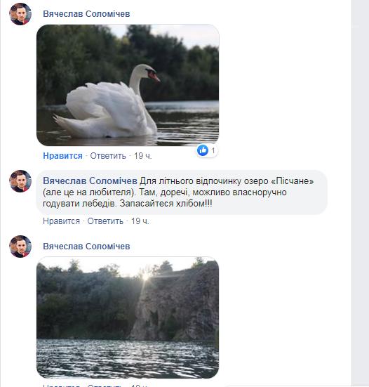 """У Вознесенську на озері """"Пісчане"""" відпочивальники можуть погодувати лебедів, фото-1"""