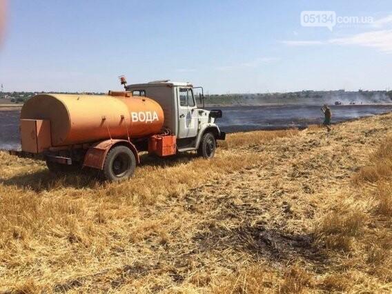На Вознесенщині через кинутого сірника вигоріло 8 гектарів пшениці, - ФОТО, фото-2
