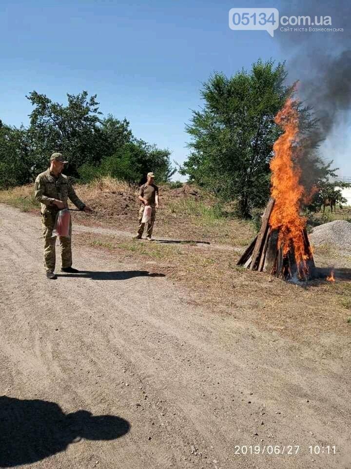 У Вознесенській виправній колонії проведено тренування особового складу, - ФОТО, фото-4