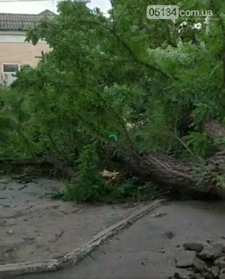 Блискавичний ураган наробив шкоди у Вознесенську всього за кілька хвилин, фото-2