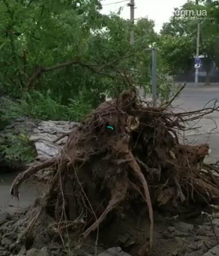 Блискавичний ураган наробив шкоди у Вознесенську всього за кілька хвилин, фото-1