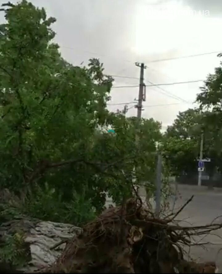 Блискавичний ураган наробив шкоди у Вознесенську всього за кілька хвилин, фото-4