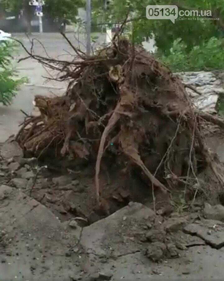 Блискавичний ураган наробив шкоди у Вознесенську всього за кілька хвилин, фото-3